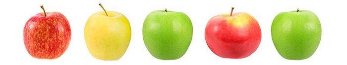 Сорти яблук фото